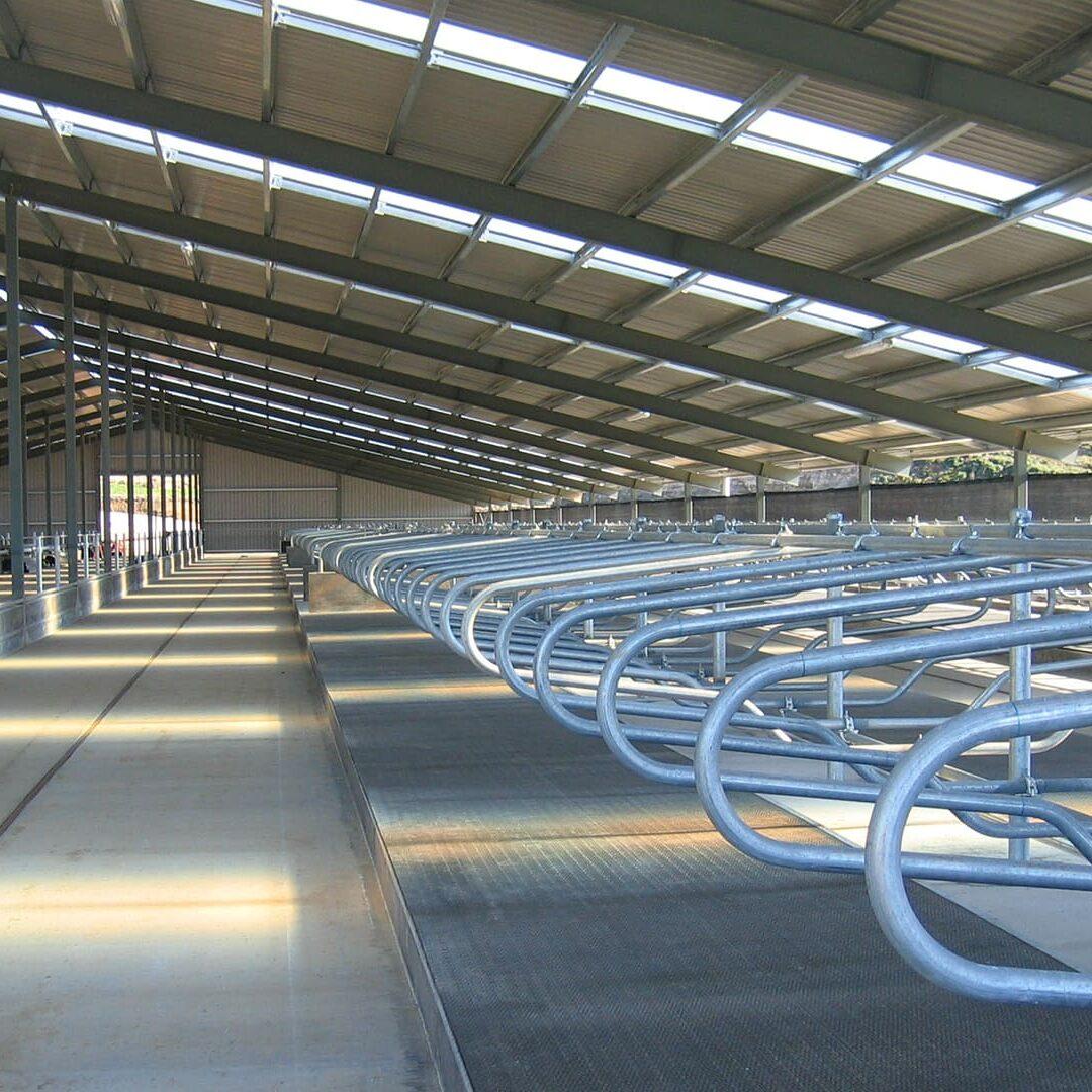 Tony Boyce Building - Farm Build Wintering Barn1